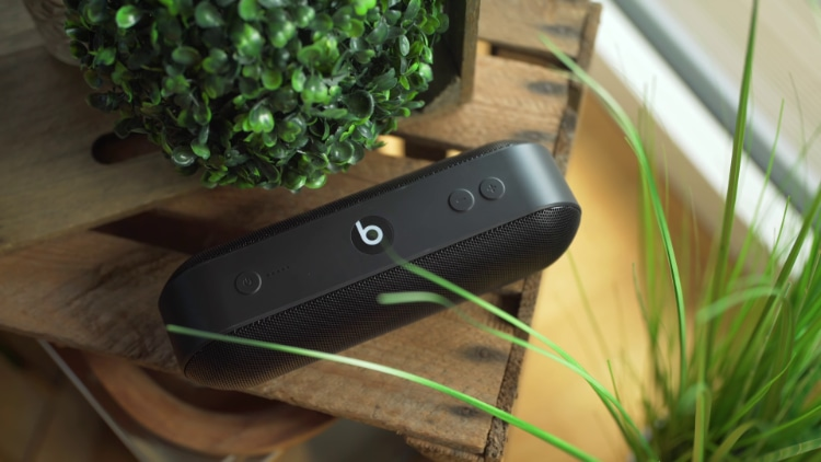 Black Beats Pill+ near green plants on wooden table